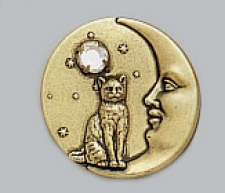 vintage look victorian style cat pin