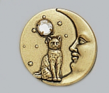 Cat On Moon Pin - Brass Ox